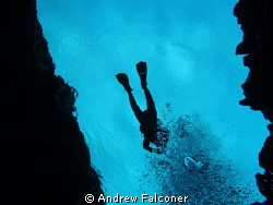 This shot of a diver above me was taken in the clearest, ... by Andrew Falconer 